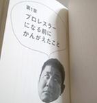 n_2.JPG